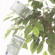 3000 Euro Kurzzeitkredit heute noch aufs Konto